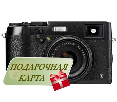 Бинокль Carl Zeiss 8х42 T* FL Victory